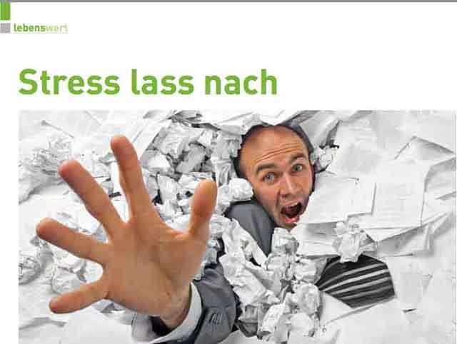 PDF: Stress lass nach! erschienen in Phoenix